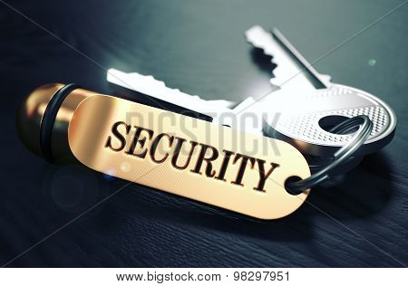 Security Concept. Keys with Golden Keyring.
