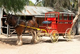 stock photo of carriage horse  - A Draught Horse waiting for passengers to board the carriage - JPG