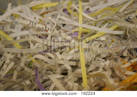 Shredded Paper & Documents