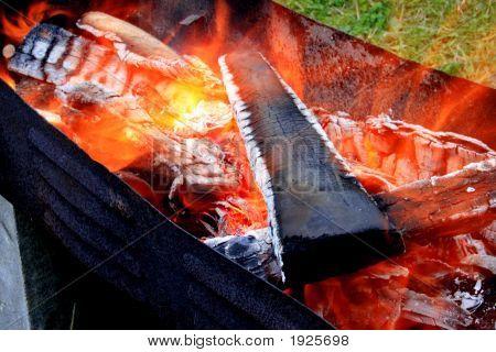 Fuego de la barbacoa
