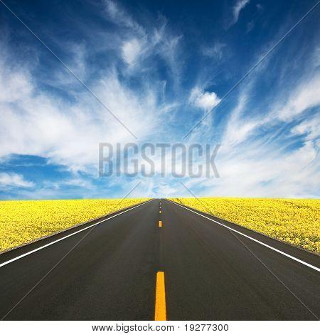 Straße zwischen gelben Raps Feld
