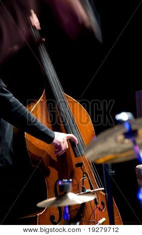 Acoustic double bass player - Classic Jazz