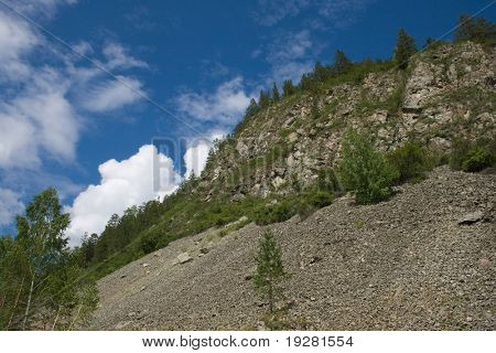 Mountain slope with trees and rock slide or rockfall
