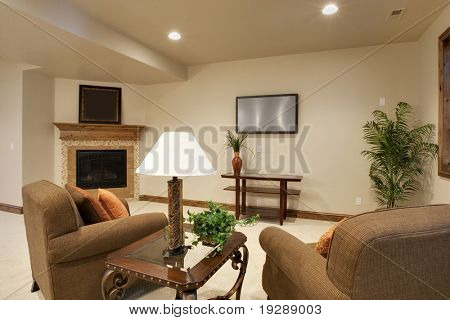 Basement movie room great room