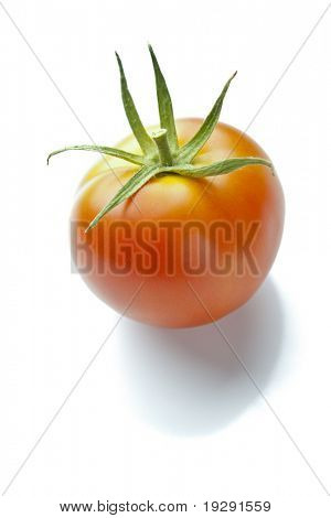 Ripe Red Tomato on Reflective White with Soft Shadow Underneath