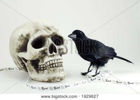 Skull And Black Crow With Halloween Banner