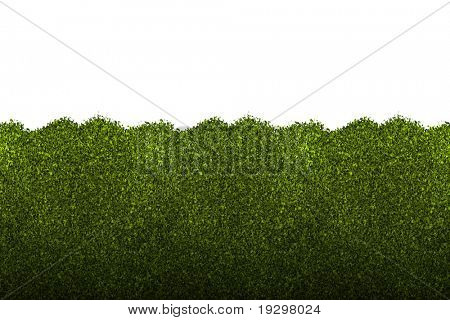 a large illustrated background image a nice green hedge