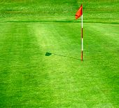 stock photo of rich soil  - Green golf course - JPG