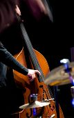 stock photo of double-bass  - Acoustic double bass player  - JPG