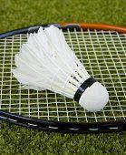 Badminton Racquet And A Shuttlecock On The Grass