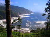 Oregon Coast Revealed
