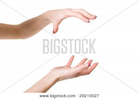 Beautiful woman hands open isolated on white background