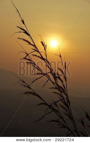 Grass Landscape Nature Sunset Mountain