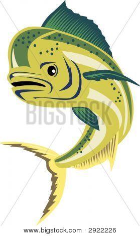 Dolpin Fish