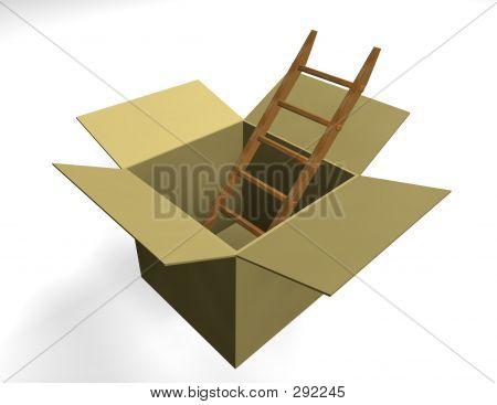 Ladder In Box