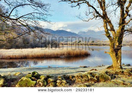 Picturesque Winter Landscape