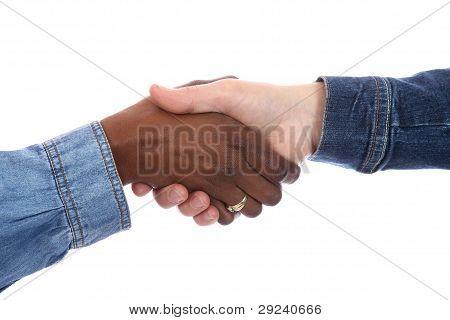 Handshake -multi Racial