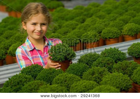 Gardening, gardener - little girl with seedlings in the greenhouse