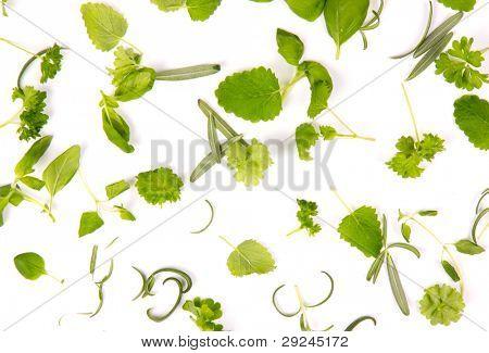 Fresh herbs background, isolated on white background