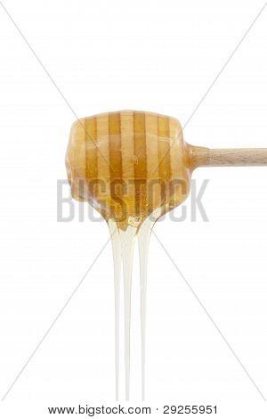 Honey Pouring