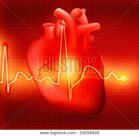 Herzen kardiogramm, Bitmap kopieren