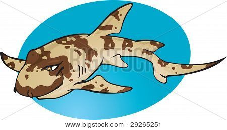 Cartoon Bamboo Shark