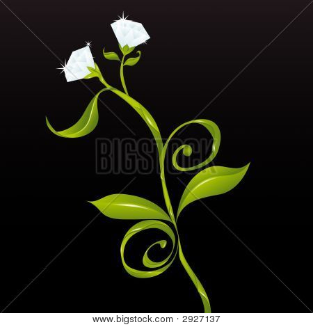 Flowers Or Diamonds