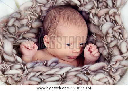 Cute newborn baby boy posing for camera