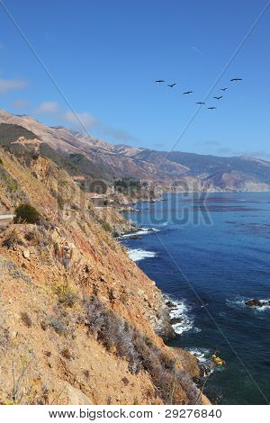 Triangular flight of gray pelicans over rocky coast and azure water of Pacific ocean