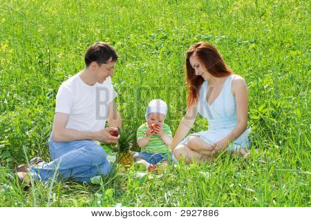 Family At Picnic