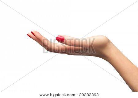 Closeup of a woman's palm