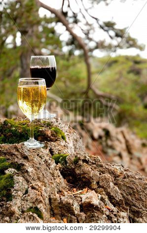 Glass Of Red And White Wine On A Mossy Stone