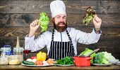 Eat Healthy. Dieting Concept. Man Wear Hat And Apron Hold Lettuce. Healthy Nutrition. Bearded Hipste poster