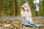 Adorable Little Girl Picking The First Flowers Of Spring In The Woods On Beautiful Sunny Spring Day. poster