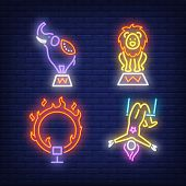 Circus Acrobat Elephant, Lion And Ring On Fire, Neon Signs Set. Circus Show And Entertainment Design poster