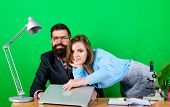 Love Affair At Work. Seduction. Business Couple At Computer. Corporate Ethics. Businessman And Assis poster