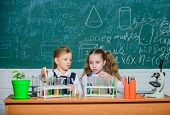 Girls On School Chemistry Lesson. School Laboratory Partners. Kids Busy With Experiment. Test Tubes  poster