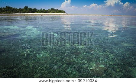 Ilha de Sipadan corais Sabah Bornéu