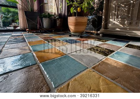 Colorful Tile Plunch On The Floor