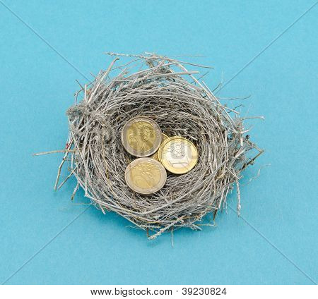 Silver Bird Nest And Euro Coins Money On Blue