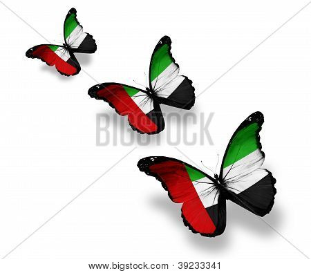 Three Uae Flag Butterflies, Isolated On White