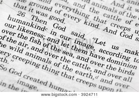 Genesis 1: 26