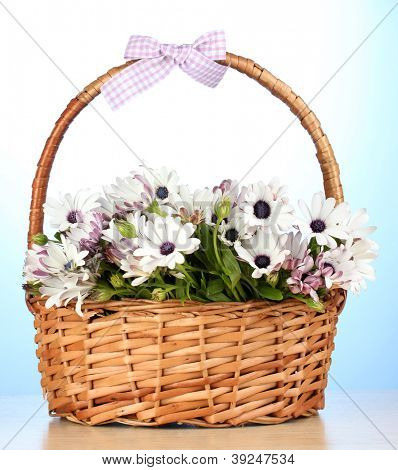 bouquet of beautiful summer flowers in basket, on blue background
