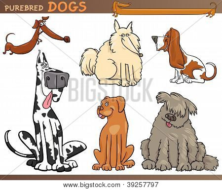 Perros de razas dibujos animados Set