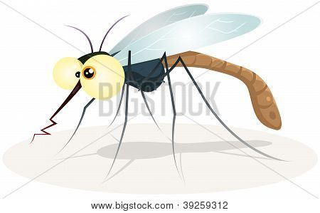 Mosquito Character