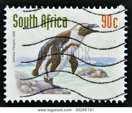 A stamp printed in RSA shows jackass penguin