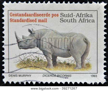 SOUTH AFRICA - CIRCA 1993: A stamp printed in South Africa shows a black rhinoceros Diceros bicornis