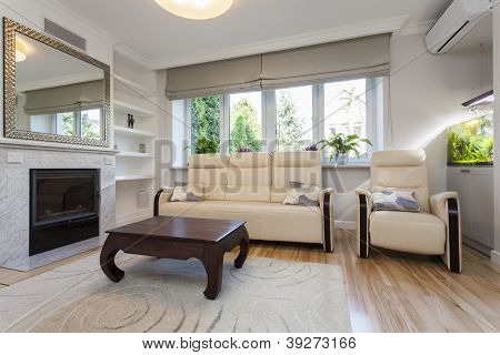 Sofa And Armchair, Living Room