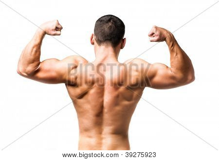 muscular male back over white background