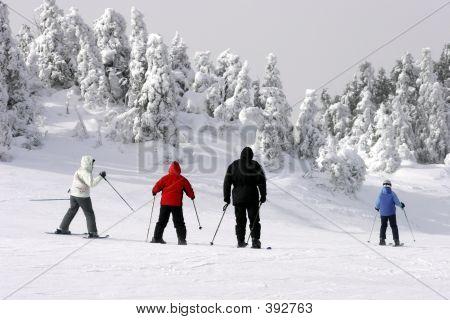 Familia esquí cuesta abajo